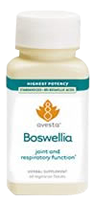 Ethically Wildcrafted Boswellia Serrata Suitable for Vegetarians